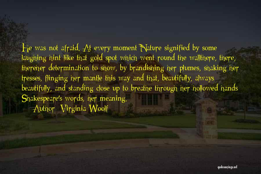 Wall Up Quotes By Virginia Woolf