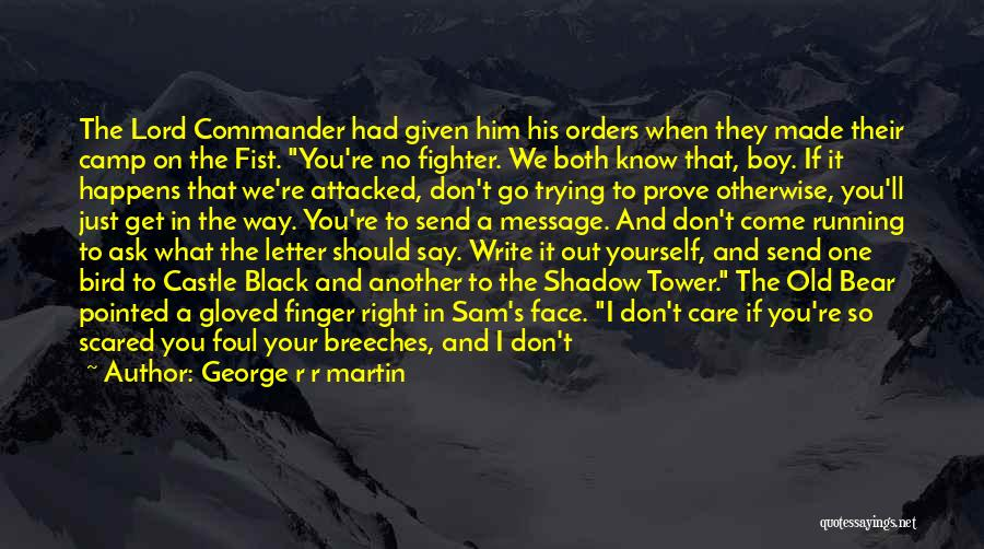 Walls Coming Down Quotes By George R R Martin