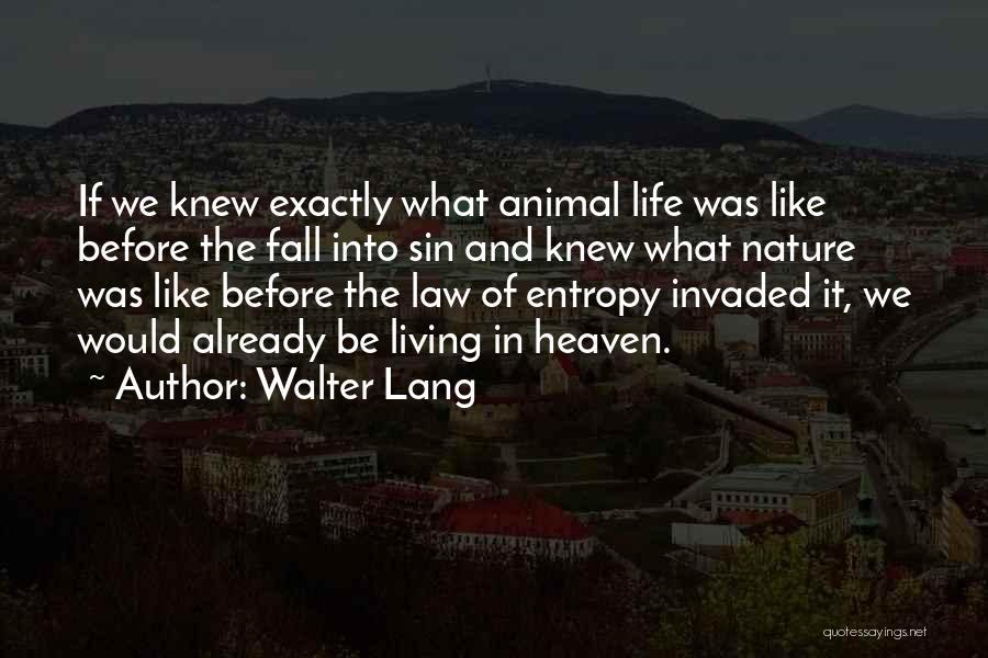 Walter Lang Quotes 1689477