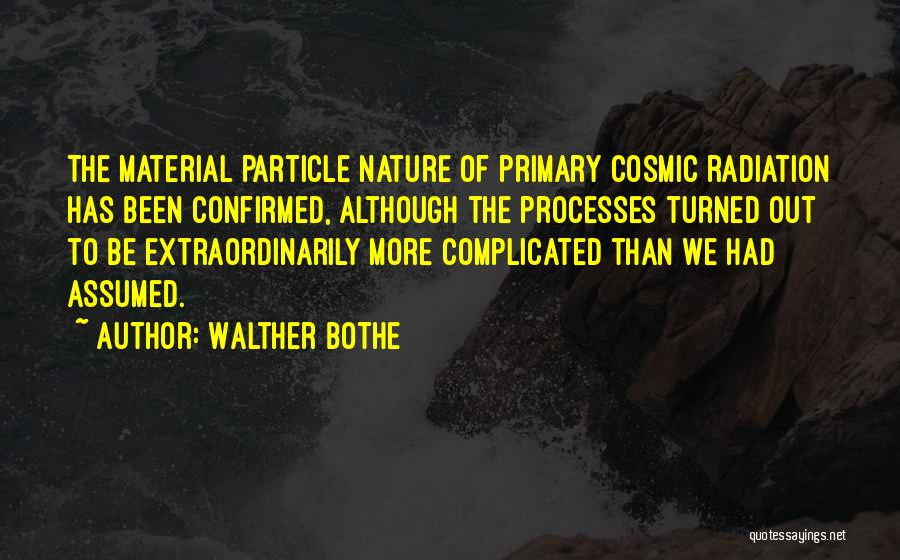 Walther Bothe Quotes 578623