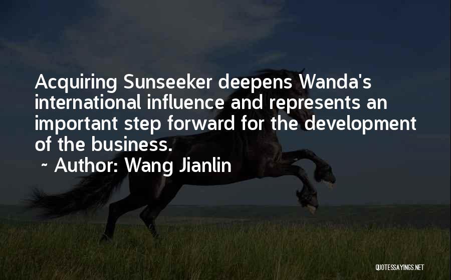 Wang Jianlin Quotes 388834