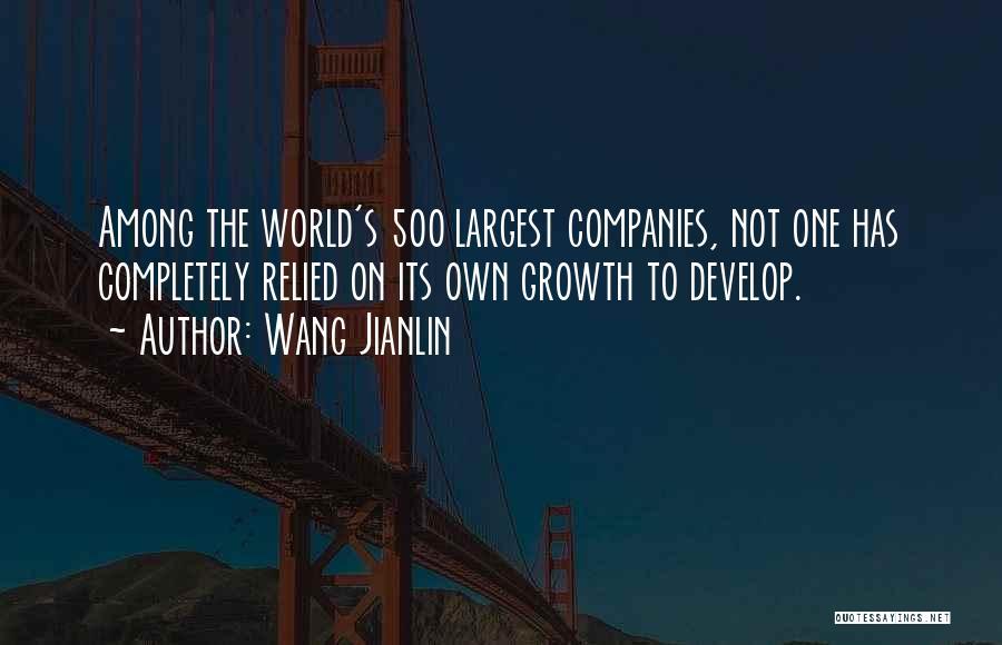 Wang Jianlin Quotes 583290