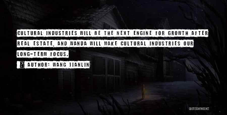 Wang Jianlin Quotes 759816