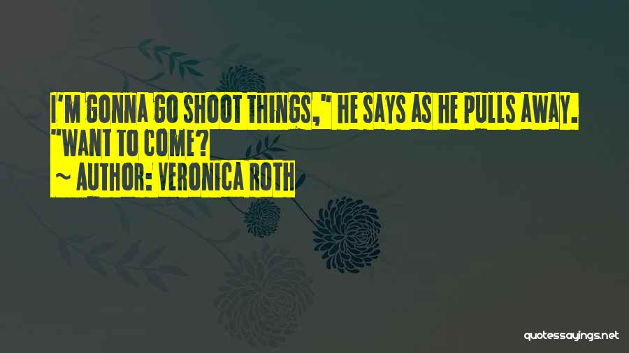 Want To Go Away Quotes By Veronica Roth