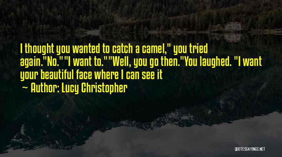 Want To See You Again Quotes By Lucy Christopher