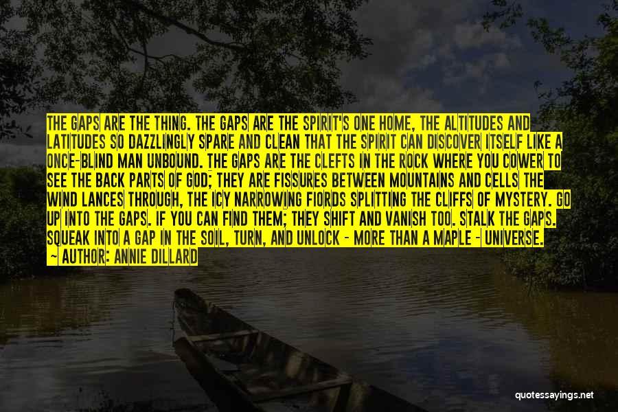 Want Vanish Quotes By Annie Dillard
