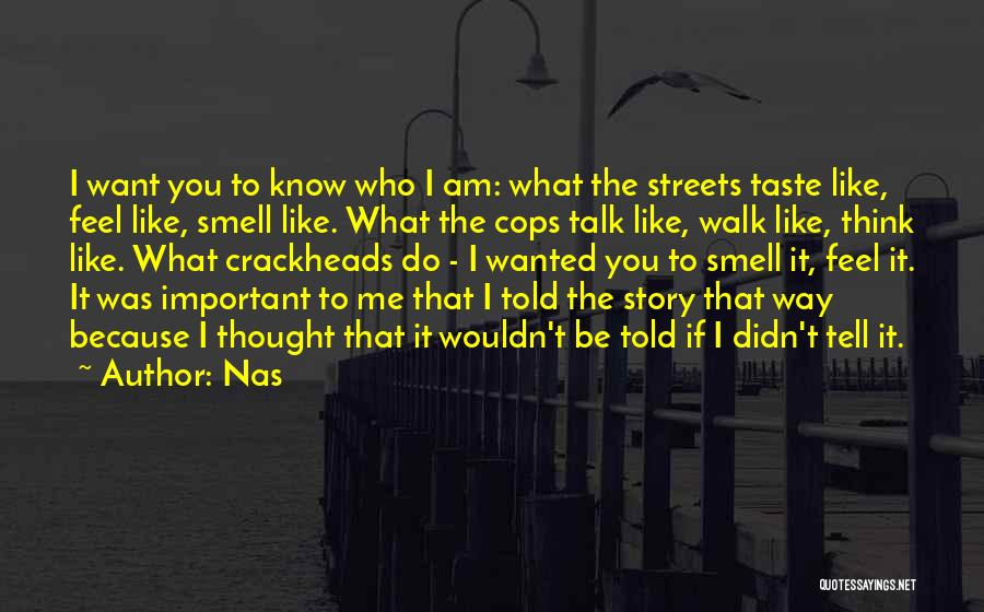 Wanted To Talk Quotes By Nas