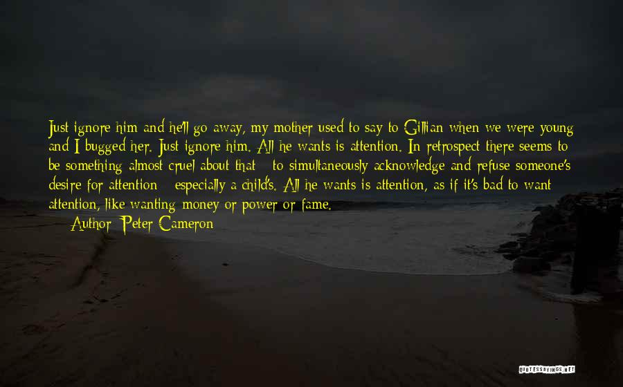 Wanting Someone's Attention Quotes By Peter Cameron