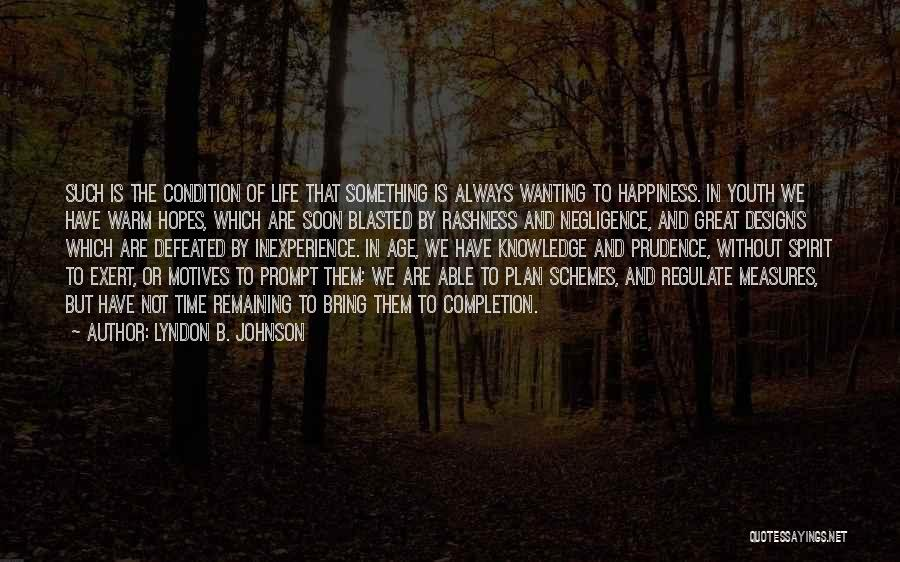 Wanting Something In Life Quotes By Lyndon B. Johnson