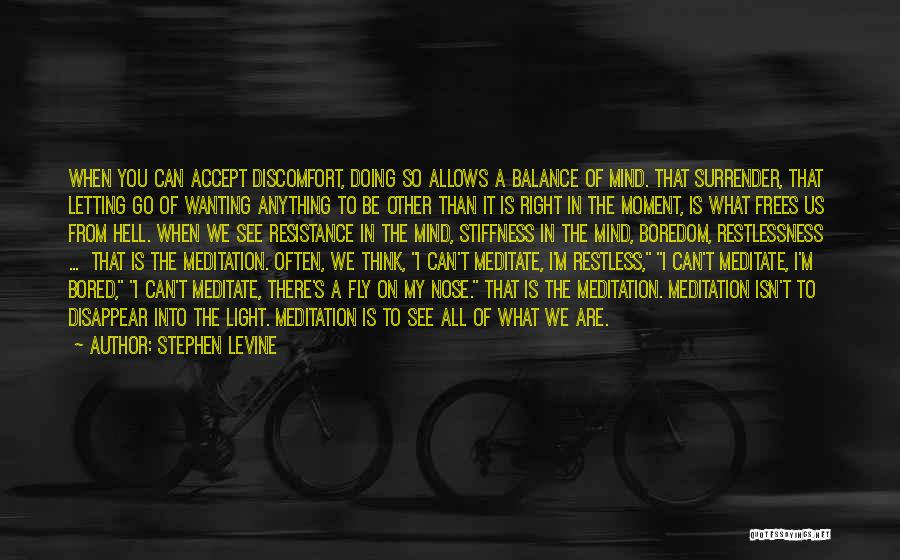 Wanting To Fly Quotes By Stephen Levine