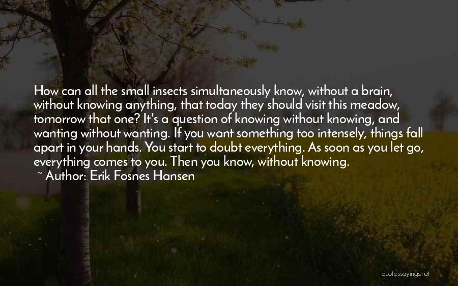 Wanting To Start Over With Someone Quotes By Erik Fosnes Hansen