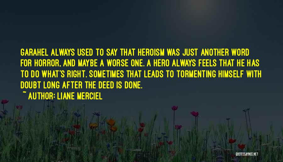 War Heroes Quotes By Liane Merciel