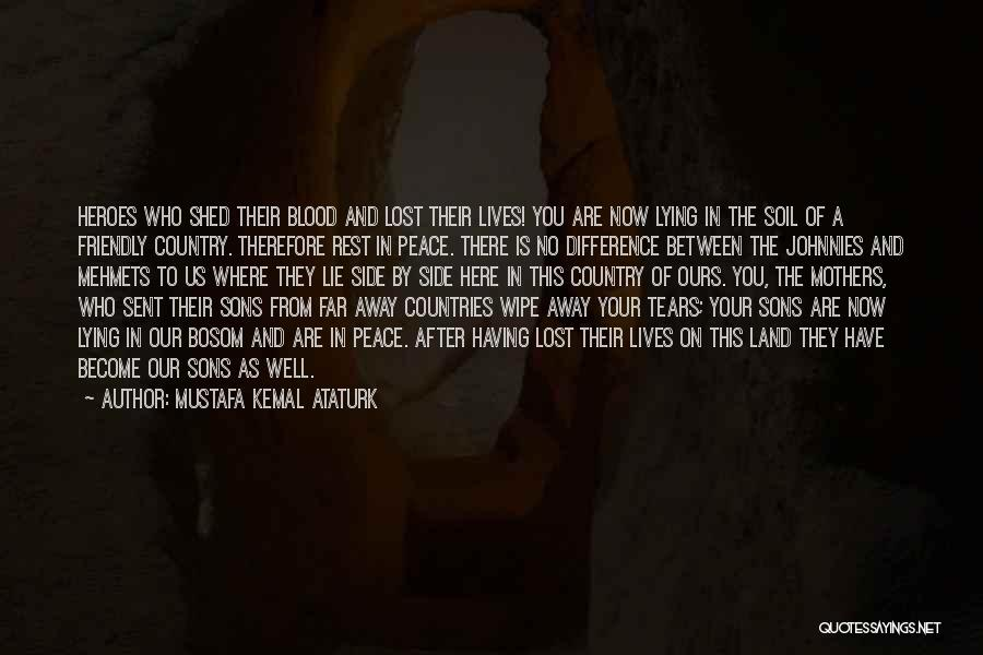 War Heroes Quotes By Mustafa Kemal Ataturk