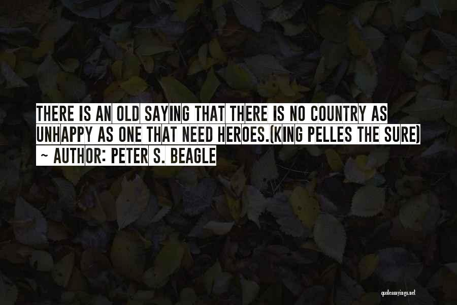 War Heroes Quotes By Peter S. Beagle