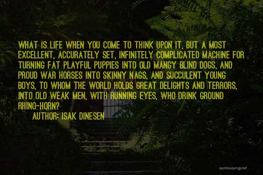 War Horses Quotes By Isak Dinesen