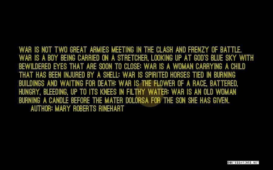 War Horses Quotes By Mary Roberts Rinehart