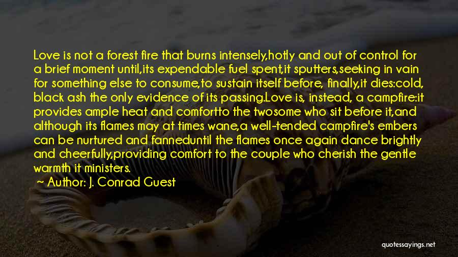 Warmth And Comfort Quotes By J. Conrad Guest