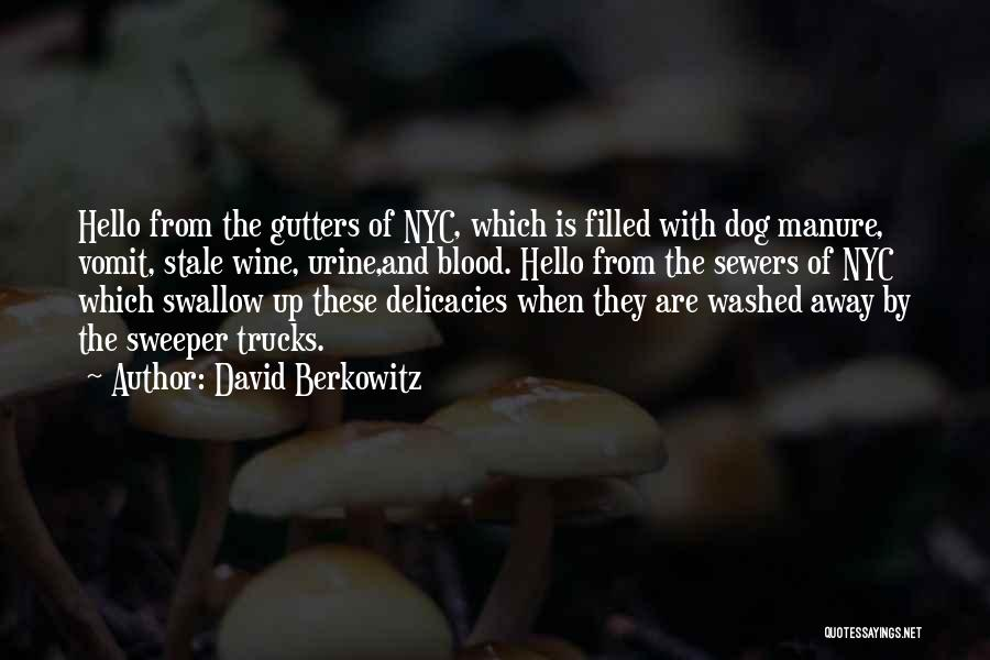 Washed Away Quotes By David Berkowitz