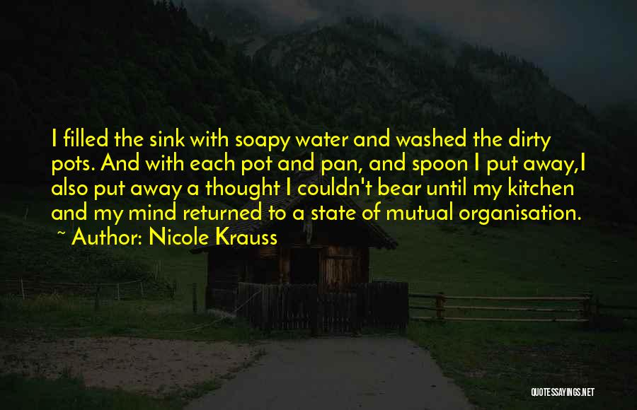 Washed Away Quotes By Nicole Krauss
