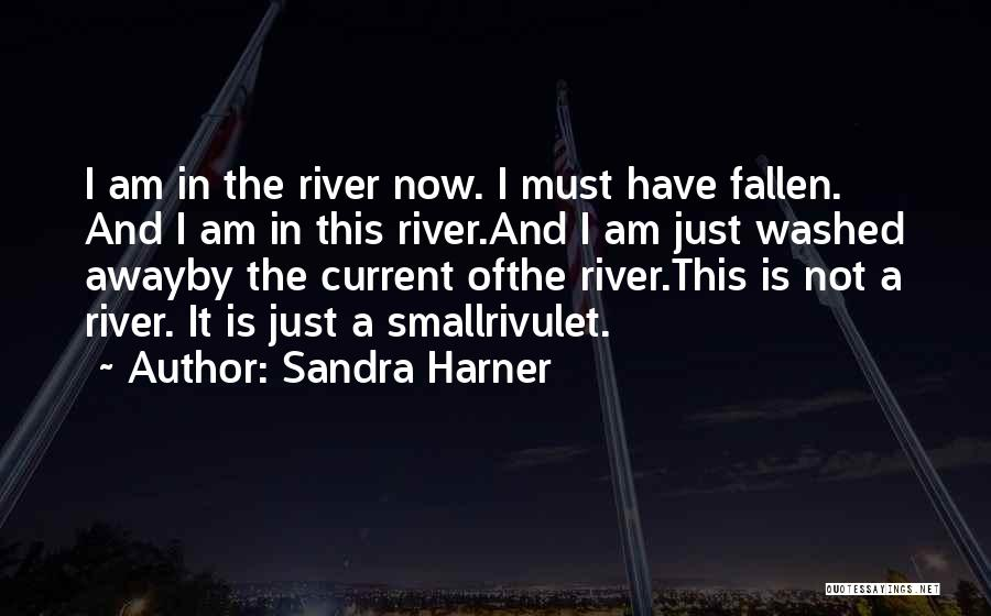 Washed Away Quotes By Sandra Harner