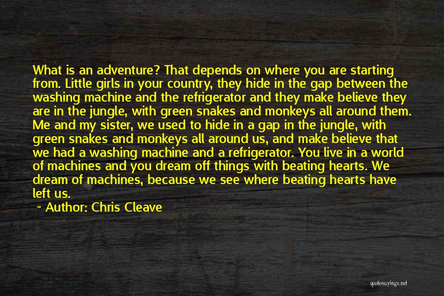 Washing Machines Quotes By Chris Cleave