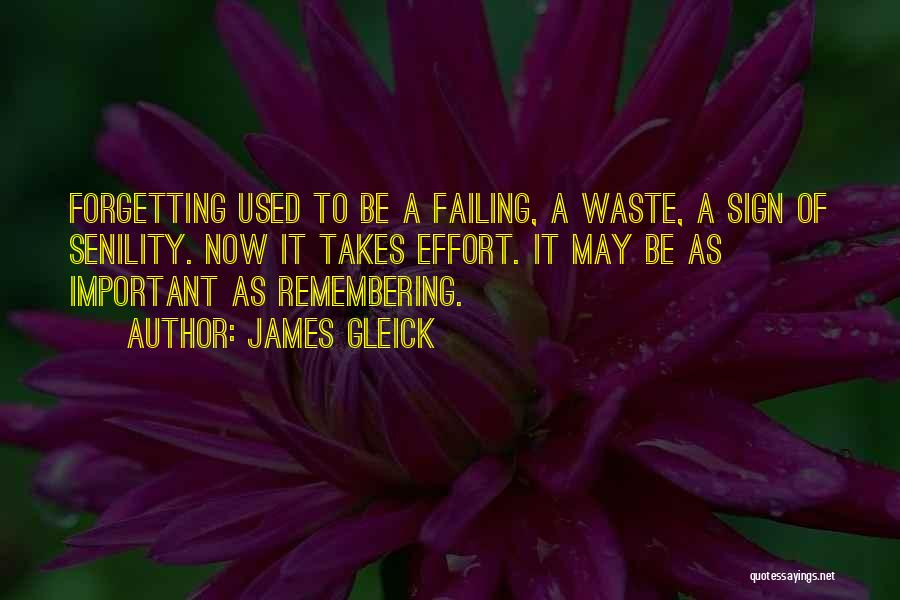 Waste Effort Quotes By James Gleick