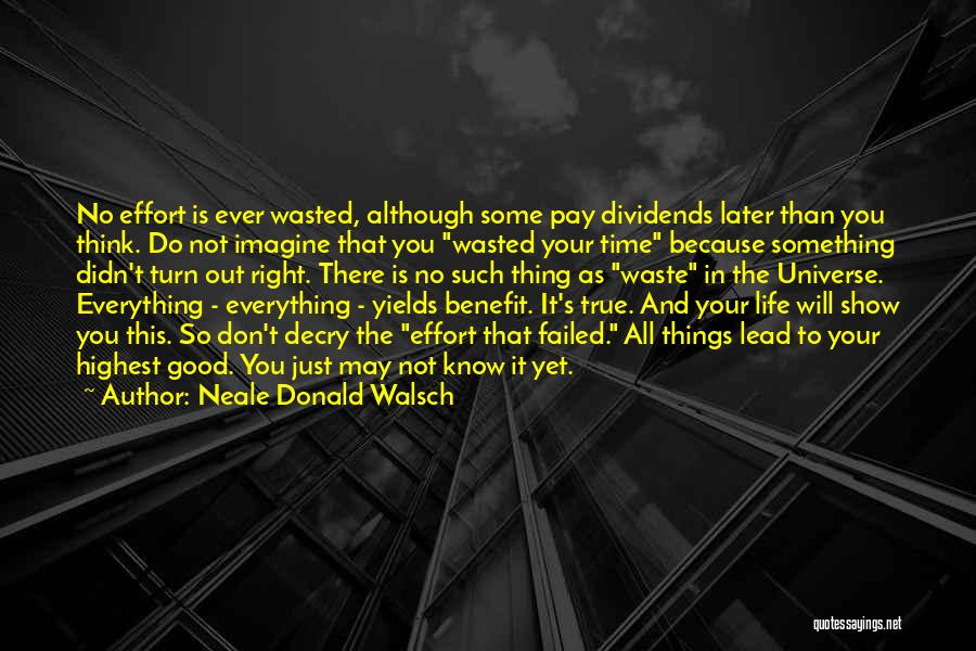 Waste Effort Quotes By Neale Donald Walsch
