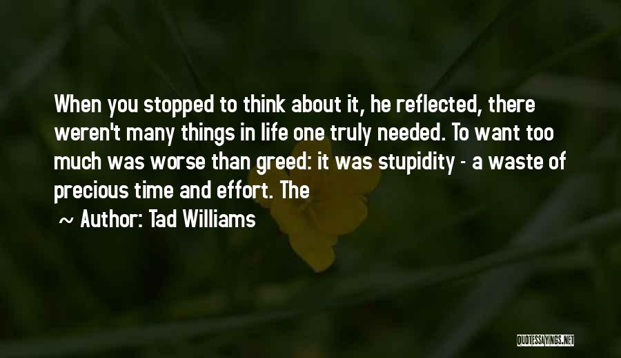 Waste Effort Quotes By Tad Williams
