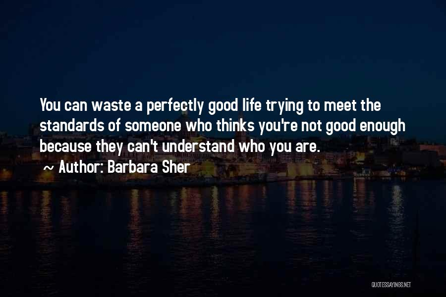 Waste Of Life Quotes By Barbara Sher