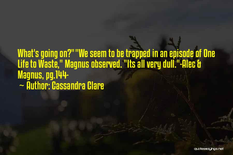 Waste Of Life Quotes By Cassandra Clare