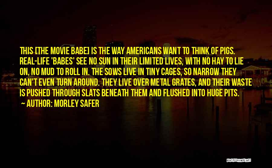 Waste Of Life Quotes By Morley Safer