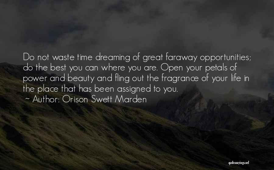 Waste Of Life Quotes By Orison Swett Marden