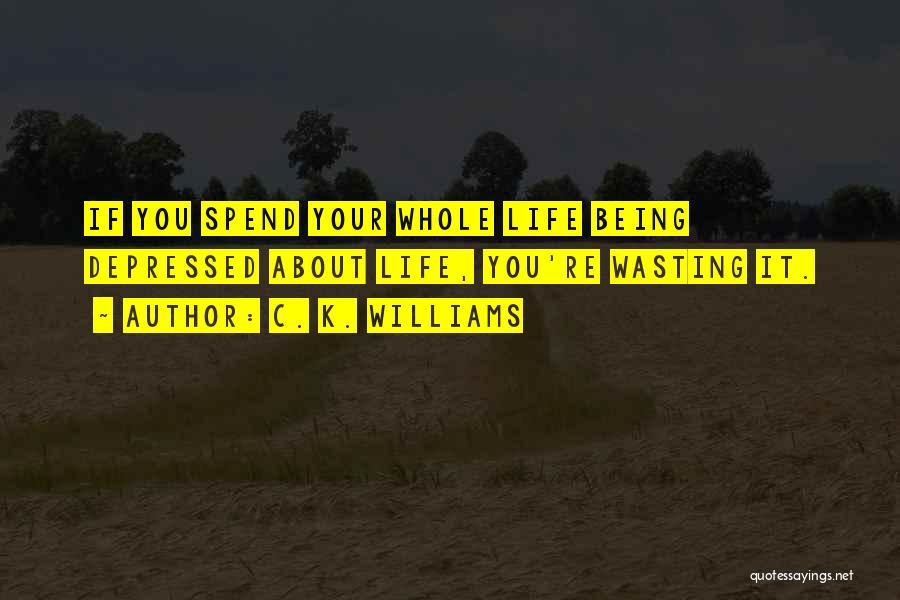 Wasting Life Quotes By C. K. Williams