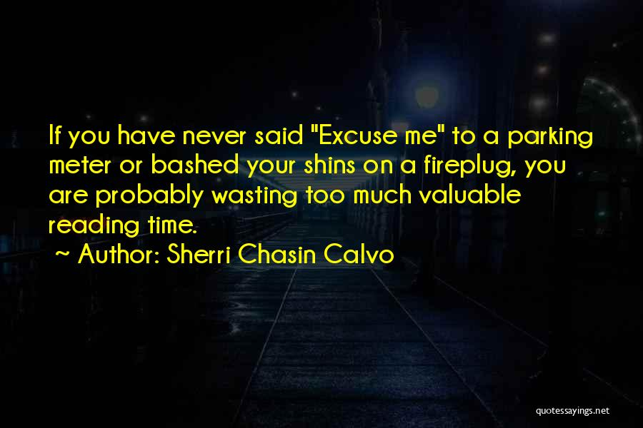 Wasting Valuable Time Quotes By Sherri Chasin Calvo
