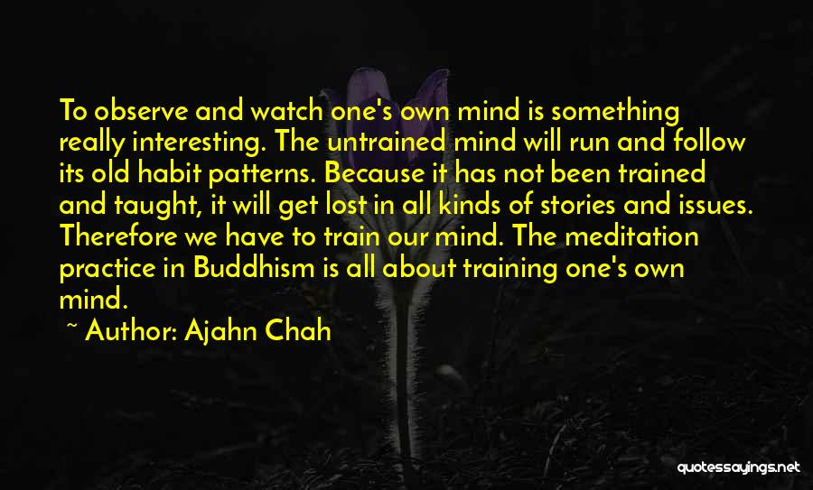 Watch And Observe Quotes By Ajahn Chah