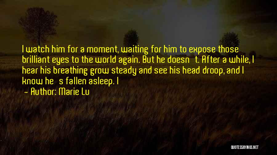 Watch Me Grow Quotes By Marie Lu