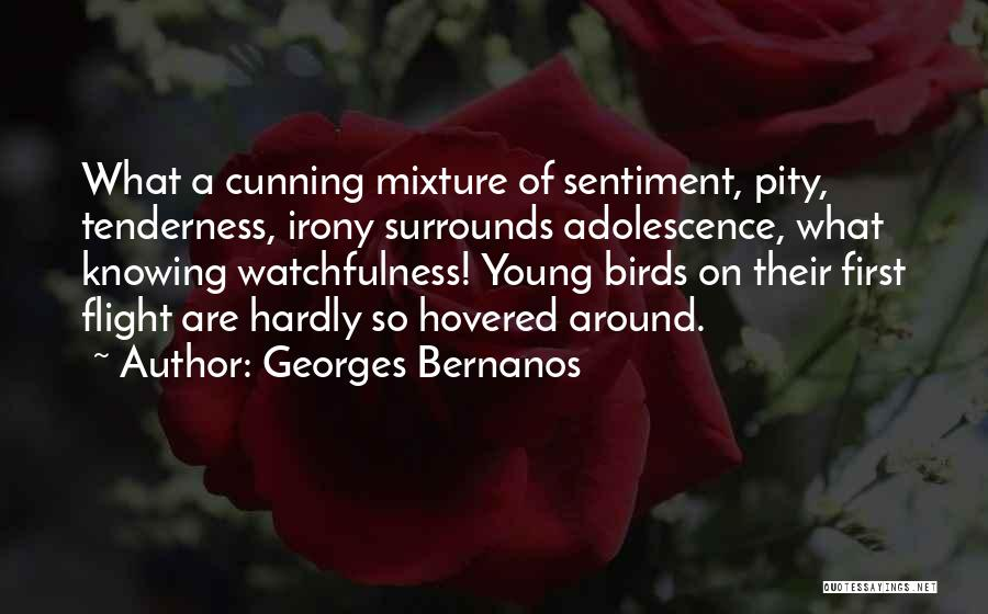 Watchfulness Quotes By Georges Bernanos