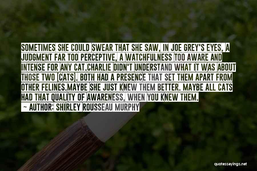 Watchfulness Quotes By Shirley Rousseau Murphy