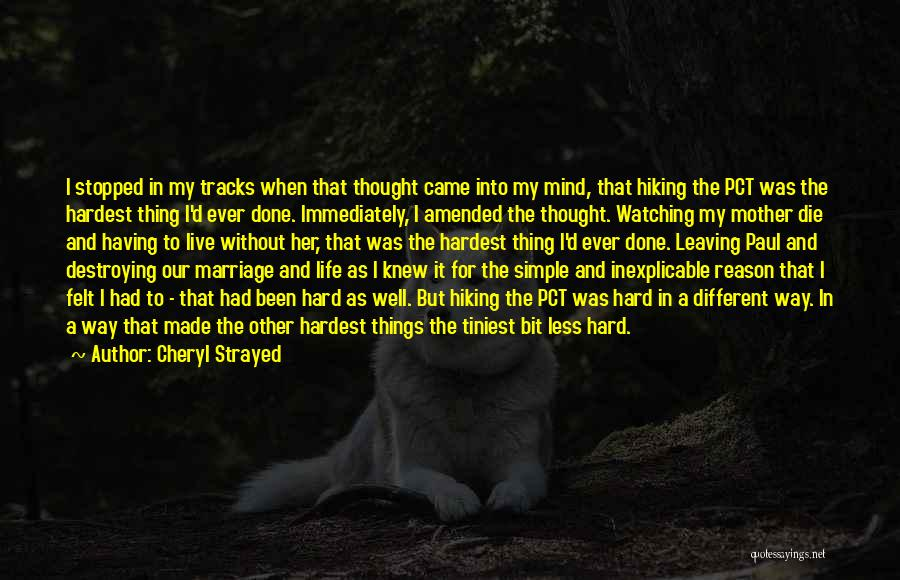 Watching Someone Die Quotes By Cheryl Strayed