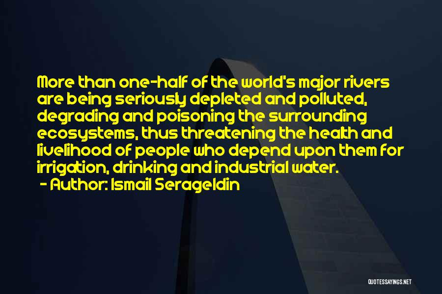 Water And Health Quotes By Ismail Serageldin