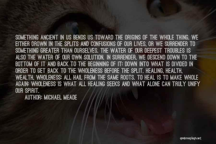 Water And Health Quotes By Michael Meade