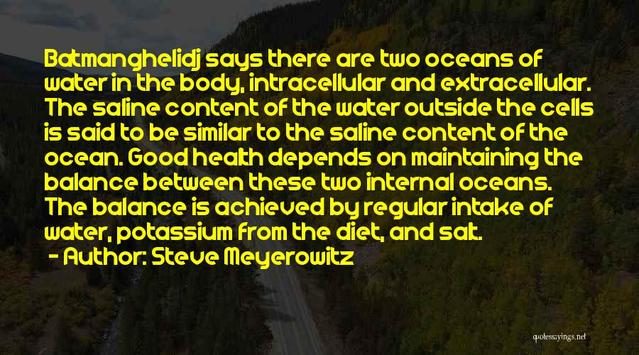 Water And Health Quotes By Steve Meyerowitz