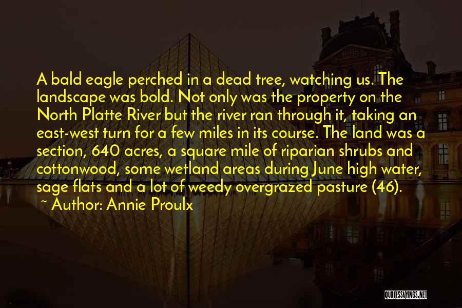 Water And Land Quotes By Annie Proulx