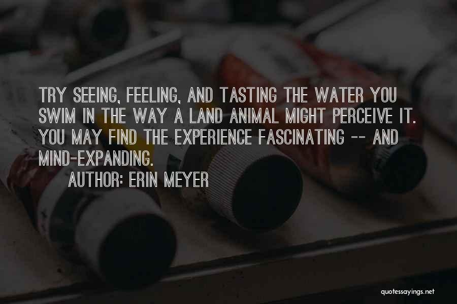 Water And Land Quotes By Erin Meyer