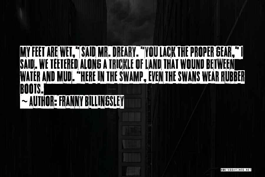 Water And Land Quotes By Franny Billingsley