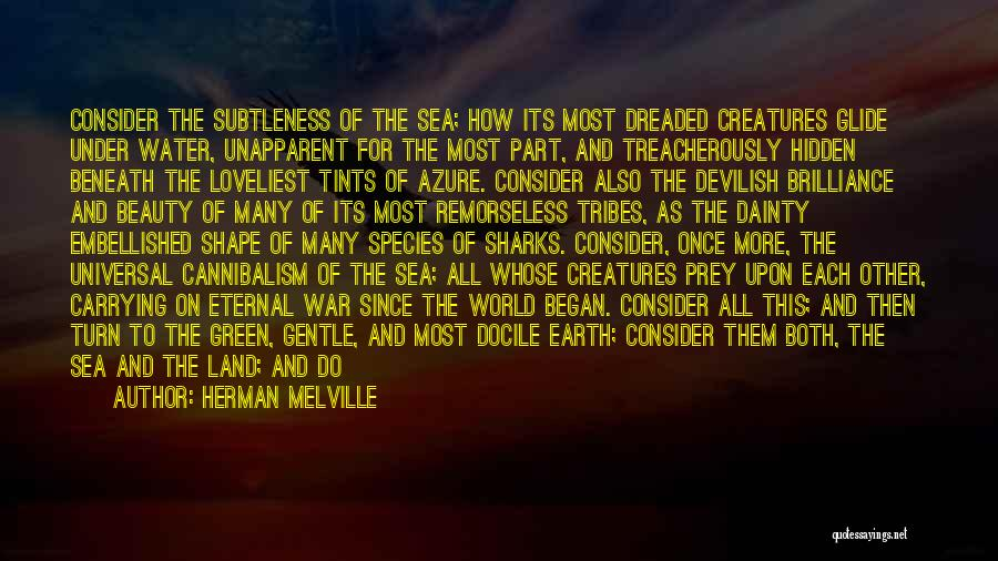 Water And Land Quotes By Herman Melville