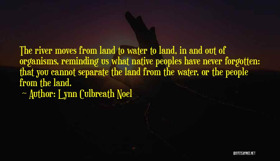 Water And Land Quotes By Lynn Culbreath Noel