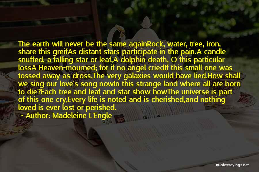 Water And Land Quotes By Madeleine L'Engle