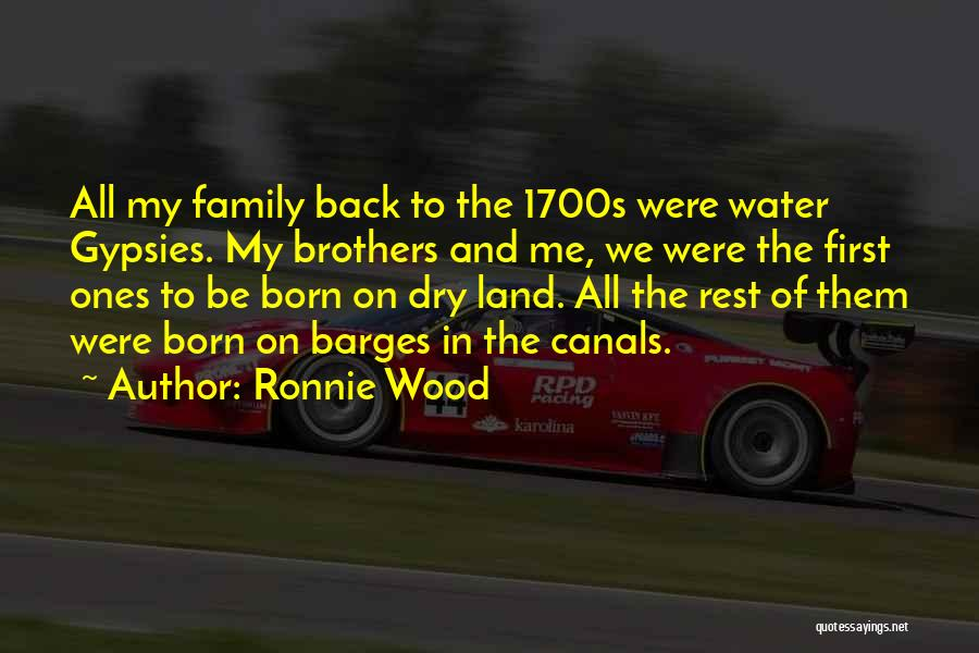 Water And Land Quotes By Ronnie Wood