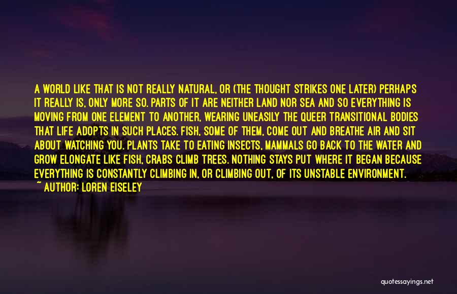 Water Bodies Quotes By Loren Eiseley
